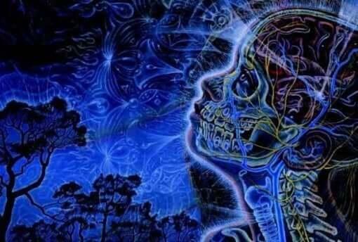 Aivolisäkkeen tehtävänä on vapauttaa erilaisia hormoneja, joiden avulla se saa meidät mukautumaan ja reagoimaan paljon paremmin ympäristön asettamiin vaatimuksiin