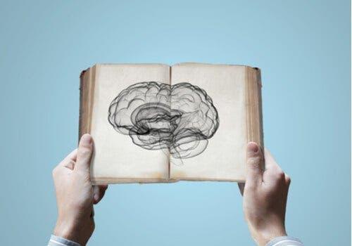Neurotiede: onko tiedon periytyminen mahdollista?