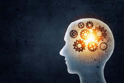 Ajatuksia ja muistia on mahdollista rekonstruoida