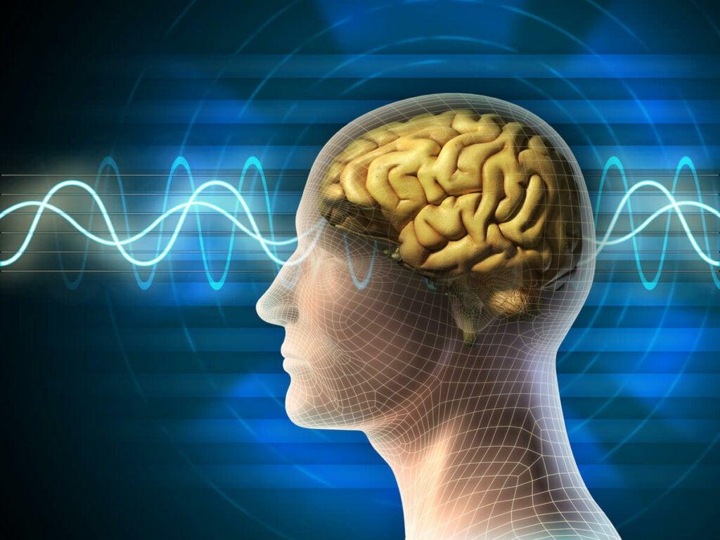 Unisyklin kolmannessa vaiheessa EEG:n aikaisemmin näyttämät theta-aallot pienentyvät delta-aalloiksi