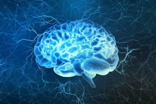 Unen eri vaiheet: aivoja ymmärtämällä voimme nukkua paremmin