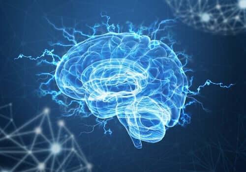 Neuroplastisuus ja posttraumaattinen stressi: voivatko aivot päästä eroon traumasta?