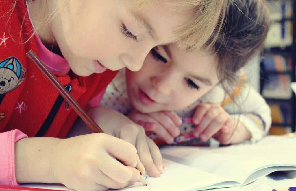 Vaikka älykkyyttä on vaikeaa määritellä, se voidaan jakaa karkeasti kahteen eri luokkaan: joustavaan ja kiteytyneeseen älykkyyteen