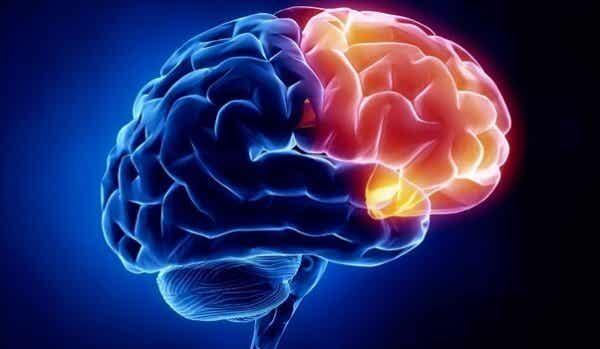 Aivojen syyllisyysalue ei aktivoidu kaikilla