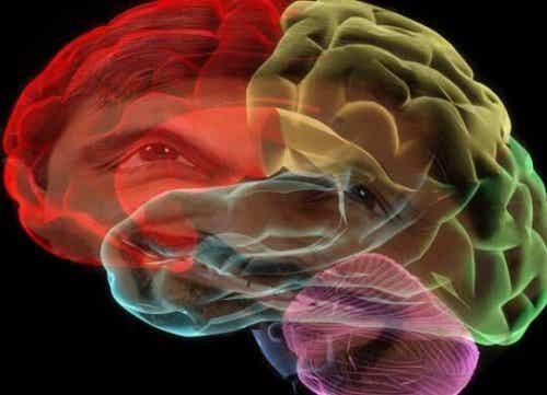 Muun muassa eräät aivojen välittäjäaineet ovat syynä siihen, miksi unohdamme jotkut unet