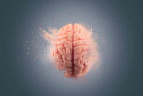 Kokaiinin vaikutukset aivoihin