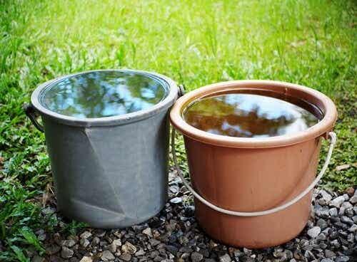 Quattronen ja Tverskyn koe itsepetoksesta tehtiin kylmää vettä hyödyntäen
