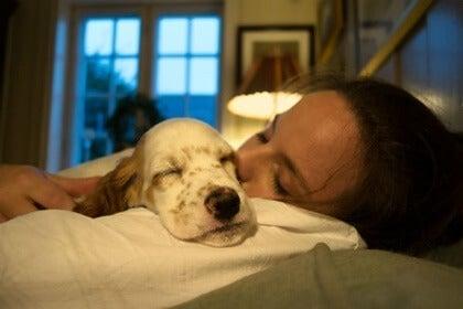 Lemmikkien kanssa nukkuminen: terveyshyödyt ja haitat